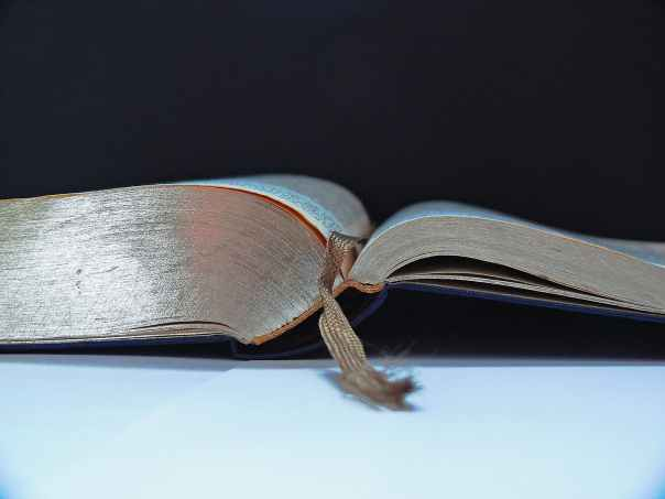 bible-holy-scripture-eager-read-book-159591.jpeg